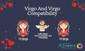 virgo and virgo compatibility
